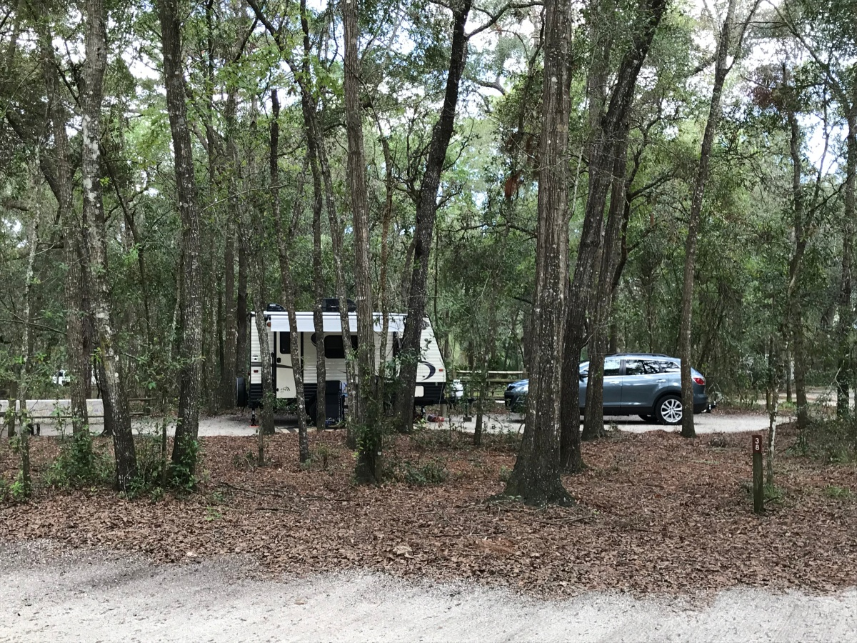 Trailers, Trash, and the Black Bears of Wekiva