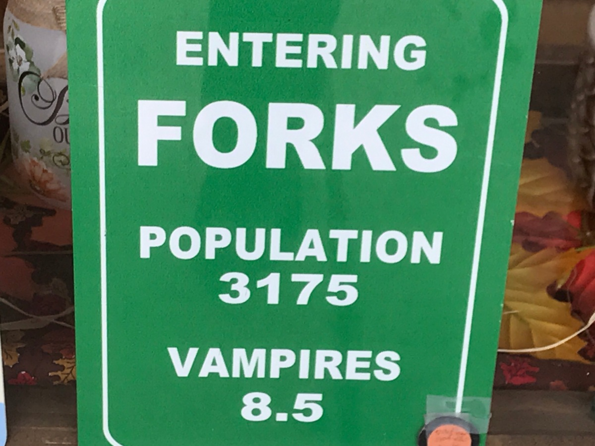 Our Twilight Tour of Forks